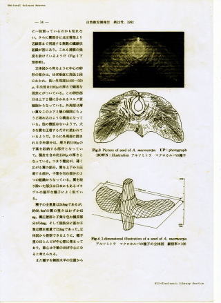 pdf ファイル 作り方 写真